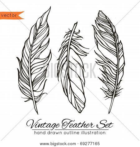 Vintage feather set isolated on white