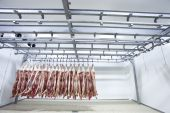 image of refrigerator  - Butchered and processed pigs hanging in a slaughter house refrigerator - JPG