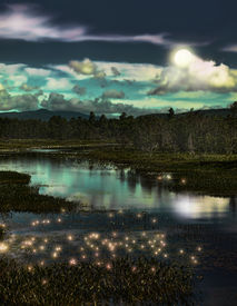 pic of lightning bugs  - depiction of a forest stream with lightning bugs at twilight - JPG