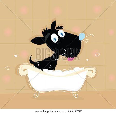 Black dog bath