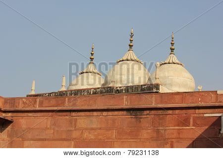 Agra Fort roof domes detail