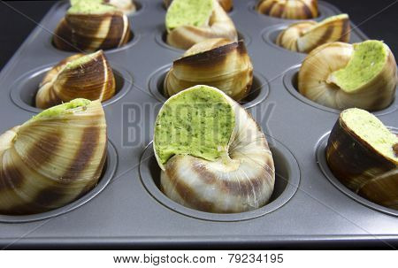 Ready To Bake Escargot