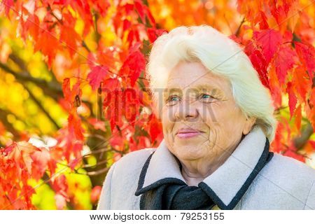 Vertical Portrait Of An Elderly Woman On A Background Of Red Leaves