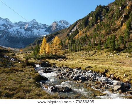 autumnal mountain valley with torrent