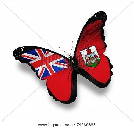 Flag Of Bermuda Butterfly, Isolated On White