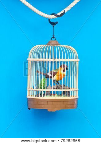 Birdcage With Artificial Colorful Bird Isolated On Blue.