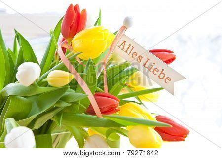 Fresh Bouquet Of Tulips