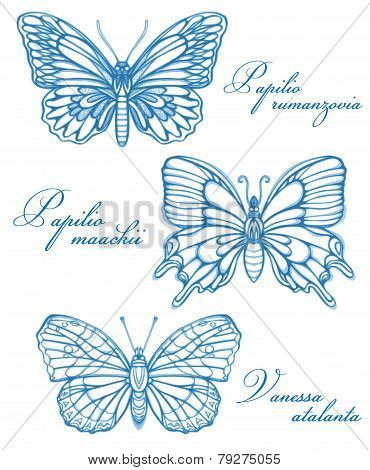 Blue Butterflies Watercolor Contour Drawing Imitation