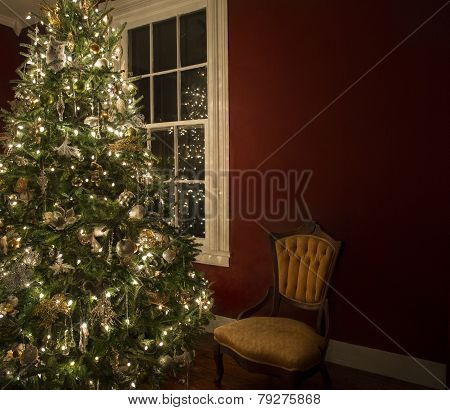 Christmas tree by window