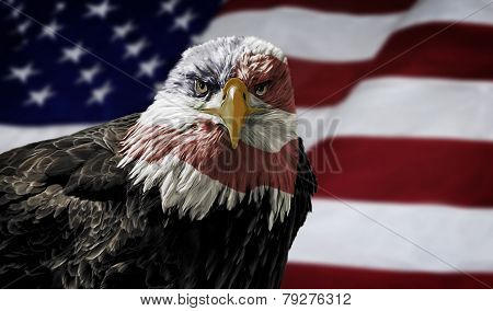 American Bald Eagle On Flag