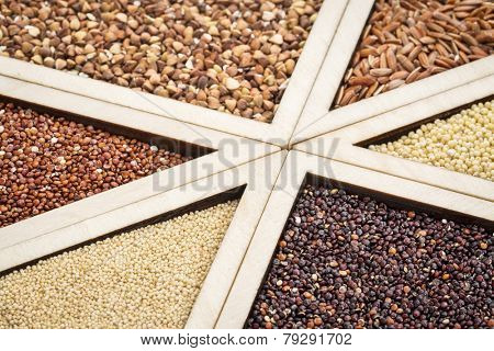 variety of gluten free grains (red and black quinoa, buckwheat, brown rive, amaranth and millet) in a wooden tray, focus on amaranth and black quinoa