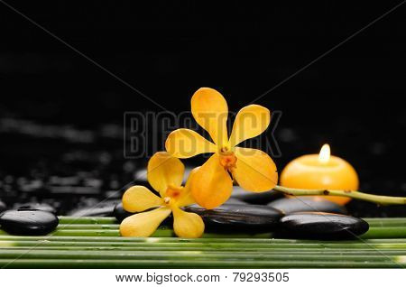 Spa still life with of beautiful orchid and black stones and bamboo grove