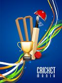 stock photo of cricket bat  - Shiny winning trophy with bat - JPG