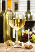 stock photo of wine bottle  - Glasses of wine with bottles in background - JPG