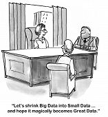 foto of leader  - Big data is often overwhelming to companies - JPG
