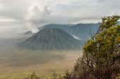 picture of bromo  - Foggy morning view of Bromo volcano at sunrise Java Indonesia - JPG