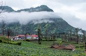 stock photo of bromo  - Foggy morning over highland village in Bromo Tengger Semeru National Park East Java Indonesia - JPG