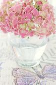 pic of hydrangea  - Pink hydrangea flowers in a vase on a colorful table - JPG