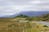 picture of galway  - Road in the National park Connemara - JPG
