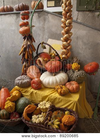 Composition Of Pumpkins