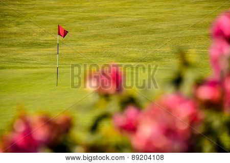 Golf Green With Red Flag And Red Flowers