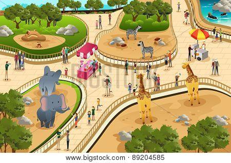 Scene In A Zoo