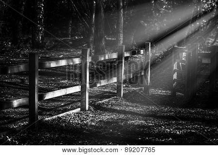 Moon Fence