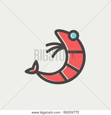 Shrimp thin line icon
