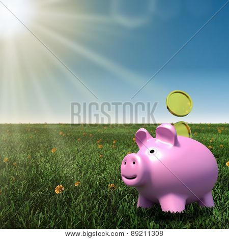 piggybank on a meadow with blue sky background