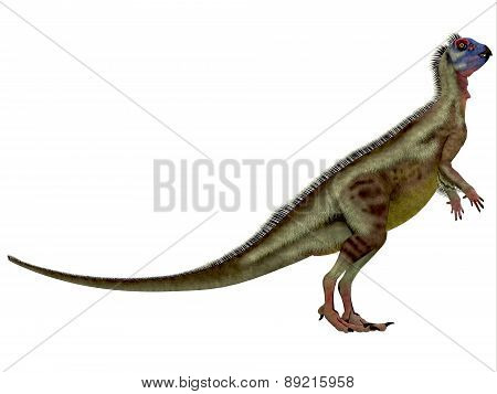 Hypsilophodon Over White