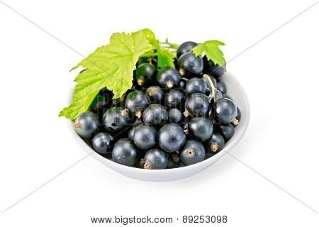 Black currants in bowl with leaf