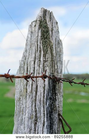 Wooden Fence Post With Rusty Barbed Wire