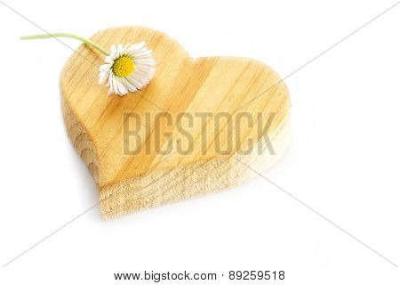 Small  Daisy Lying On A Rough Wooden Heart Shape, Isolatet