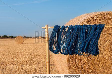 Blue Wool