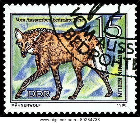 Vintage  Postage Stamp.  Prairie Wolf.