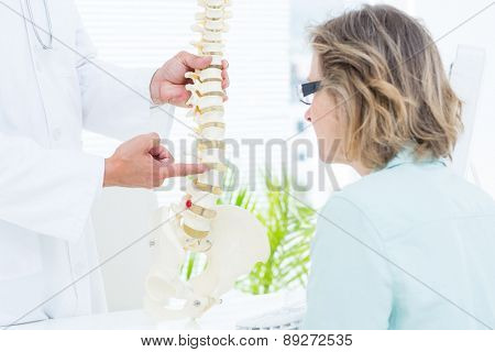 Doctor pointing anatomical spine in medical office