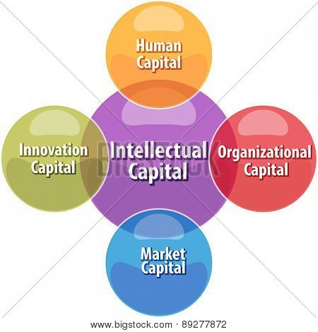 business strategy concept infographic diagram illustration of intellectual capital types vector