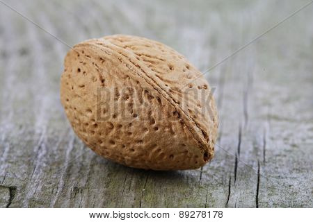 Almond in Shell - close-up