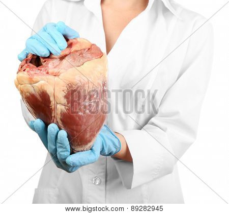 Woman holding raw animal heart isolated on white