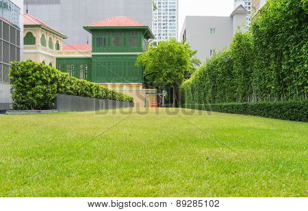 Green Grass And Cones With Stylish Building