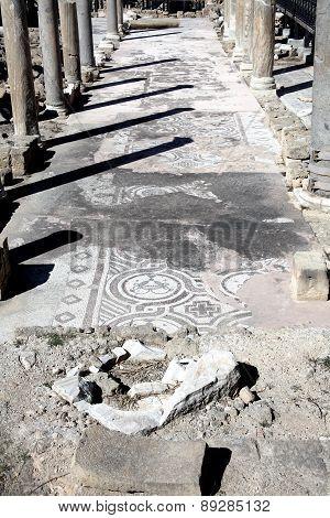 Roman ruins and mosaics, Paphos,Cyprus