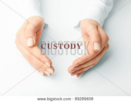 Female hands with word custody on light background