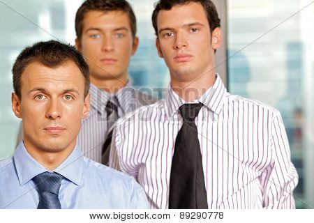 Three businessmen at office, portrait