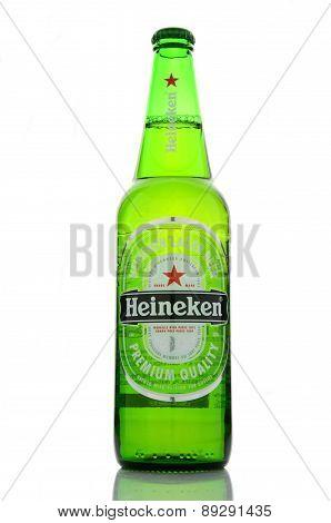 Heineken lager beer isolated on white background.