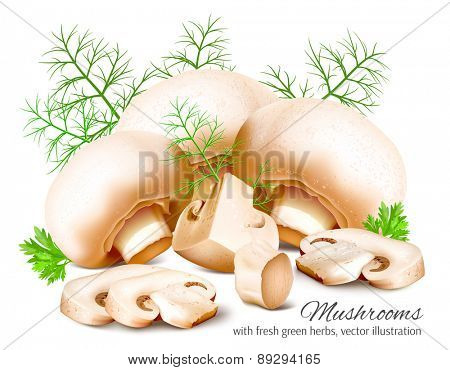 Mushrooms with parsley and dill. Vector illustration