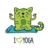 picture of yoga mat  - Green cartoon cat on blue mat in yoga position - JPG