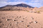 image of canary  - Teide National Park in Tenerife at Canary Islands - JPG