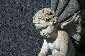 image of condolence  - weathered putto or child angel statue as a grave stone on a cemetery - JPG