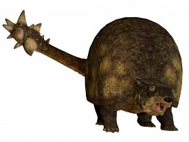 stock photo of herbivore  - Glyptodont was a large herbivorous mammal that lived in the Pleistocene Period of North and South America - JPG