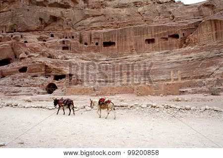 Tombs carved into the red sandstone in Petra,Jordan